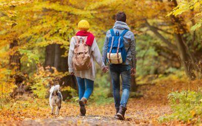 L'altopiano si veste due volte d'autunno!